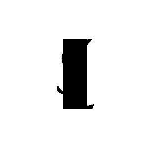 ysl zwart